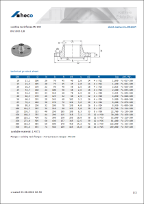Data Sheet welding neck flange PN 100