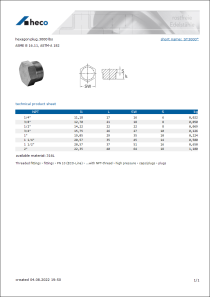 Data Sheet hexagon plug, 3000 lbs