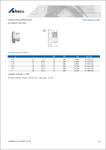 Data sheet hexagon plug, parallel thread