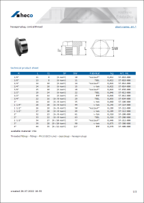 Data sheet hexagon plug, conical thread