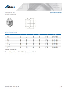 Data sheet screw plug DIN 910
